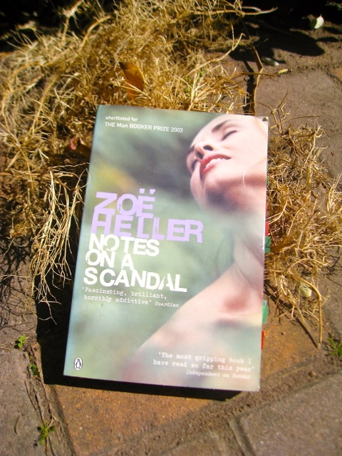 notes on a scandle by zoe heller how is the theme of obsession presented in the book essay This essay will discuss characterization in the novel notes on a scandal by zoe heller the two main characters of the novel notes on a scandal by zoe heller are barbara covert and bath sheba.